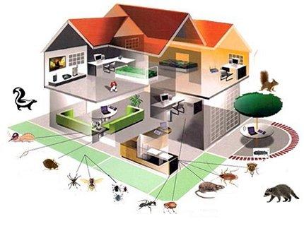Süper Temizlik Böcek İlaçlama Yöntemleri