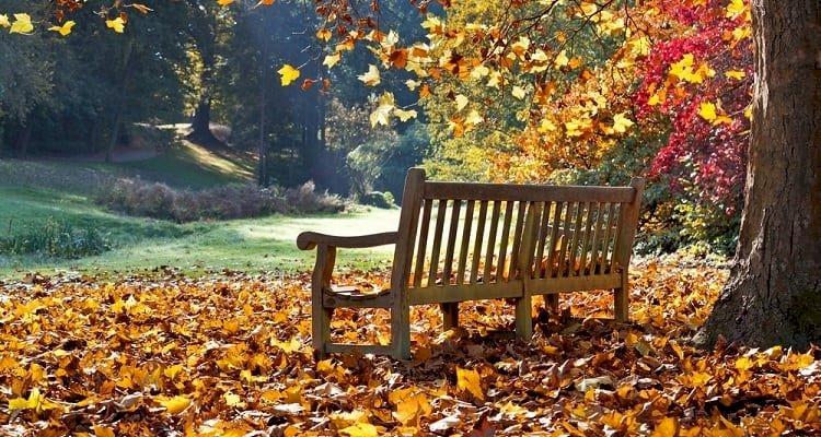Evde Vakit Geçirmenin Popüler Olduğu Mevsim: Sonbahar